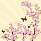 Filiale della ciliegia orientale. royalty illustrazione gratis