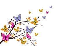 Filiale delle farfalle Fotografia Stock Libera da Diritti