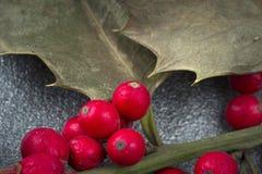 Filiale di agrifoglio Fotografie Stock
