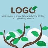 Filiale di albero con i fogli verdi Immagine Stock