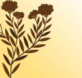 Filiale di una pianta Fotografia Stock Libera da Diritti