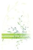 Filiale stilizzata di colore verde Fotografie Stock