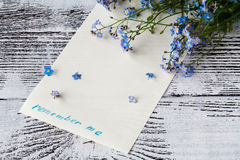 Filialen av glömma-mig-nots på papper med uttryck minns mig Royaltyfri Fotografi