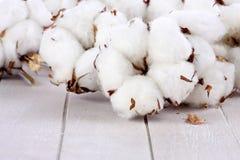 Filialer av bomullsbollar på trä Royaltyfri Foto