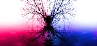 Filialer av ett träd i form av konturer av förälskade par royaltyfria foton