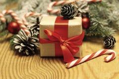Filialer av jul för en sörjakotte Royaltyfri Fotografi