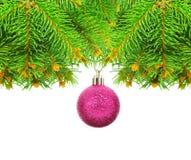 Filialer av jul som är prydlig på en vit bakgrund. Royaltyfri Bild