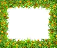 Filialer av jul som är prydlig på en vit bakgrund. Fotografering för Bildbyråer