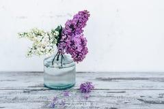 Filialer av lilan i genomskinlig glass vas på trätabellen Fotografering för Bildbyråer