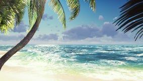 Filialer av palmträd och tropiska växter i vinden på den soliga dagen H?rlig sommar?glasbakgrund lager videofilmer