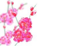 Filialer med delikata rosa blommor och knoppar Sakura punkter bakgrund isolerad white illustration royaltyfri illustrationer