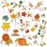 Filiali decorative di autunno Fotografia Stock Libera da Diritti