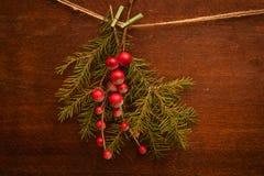 Filiali del pino con le bacche di natale Fotografia Stock