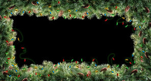 Filiali dell'albero di Natale Immagini Stock Libere da Diritti