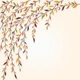 Filiali di albero stilizzate con i fogli Immagine Stock