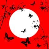 Filiali di bambù Immagini Stock Libere da Diritti