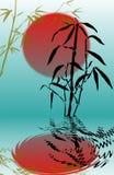 Filiali di bambù Immagine Stock