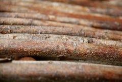 Filiali di legno Immagini Stock