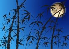 Filiali di un bambù Fotografia Stock Libera da Diritti