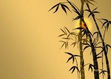 Filiali di un bambù Fotografie Stock Libere da Diritti