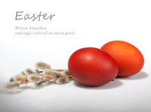 Filiali ed uova del salice Fotografia Stock