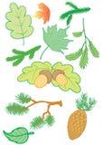filialleaves Royaltyfri Illustrationer