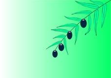 filialolivgrön royaltyfri illustrationer