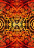 Filigrane floral ornament with mandala shape on cosmic backgrond, computer collage. Fire effect. Stock Photo