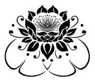 Filigree Lotus flower. Floral  rose, waterlily Royalty Free Stock Photo