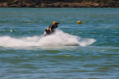 Filipa Nunes in Gran Prix of Jet Ski 2012 Stock Photos