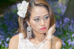 Filipińczyka model w błękitnym dzwonkowym drewnie Fotografia Royalty Free