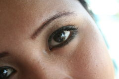Filipina eyes. Eyes on a filipina Royalty Free Stock Photography