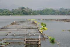 Filipinas, Mindanao, lago Sebu Foto de archivo libre de regalías