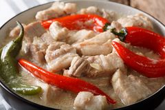 Filipino Bicol Express from spiced pork in coconut milk close-up. In a bowl. horizontal Royalty Free Stock Image