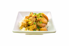 Filipino chicken adobo with rice in square bowl side view Stock Photos