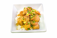Filipino chicken adobo with rice in square bowl top view Royalty Free Stock Photos