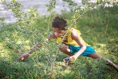 Filipino Children picking up trash near Mount Pinatubo on Aug 27 Stock Images