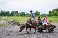 Filipino farmers riding a water cow cart along the volcanic fiel. D near Mount Pinatubo on Aug 27, 2017 in Santa Juliana, Capas, Central Luzon, Philippines Royalty Free Stock Photo