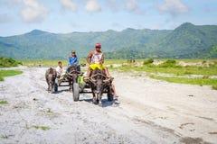 Filipino farmers riding a water cow cart along the volcanic fiel Stock Photos