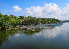 Filipino Freshwater Prawn Farm Royalty Free Stock Photo