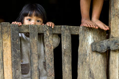 Filipino kids. An unidentified Filipino little girl is staring at the camera behing a wooden fence in the village of Banaue, north Luzon, Philippines, on Stock Photography