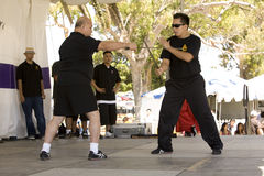 Filipino Martial Arts Demonstration 9 Stock Photography
