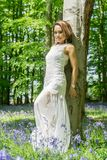 Filipino model in a blue bell wood Royalty Free Stock Photo