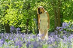 Filipino model in a blue bell wood Stock Photos