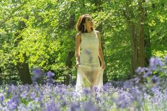 Filipino model in a blue bell wood Stock Photography