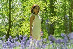 Filipino model in a blue bell wood Stock Photo