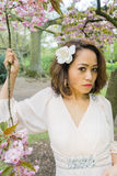 Filipino model with a hat on under a cherry blossom tree in the springtime Stock Photos