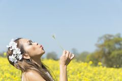 Filipino model in a rapeseed field in the springtime Stock Photography