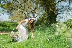 Filipino model in a rapeseed field in the springtime Royalty Free Stock Photos