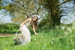 Filipino model in a rapeseed field in the springtime Royalty Free Stock Photography
